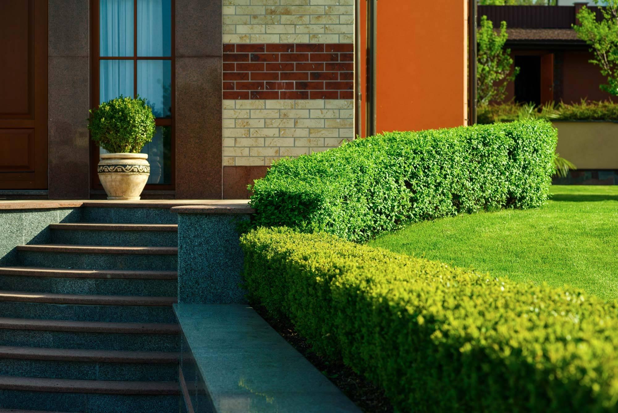 jardinier paysagiste et am nagement jardin bouc bel air jeanselme paysage. Black Bedroom Furniture Sets. Home Design Ideas